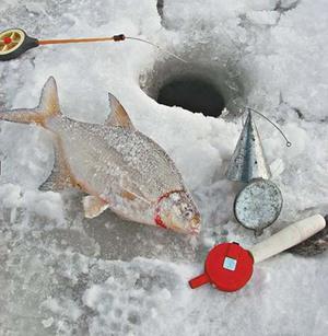 советы для успешной зимней рыбалки со льда
