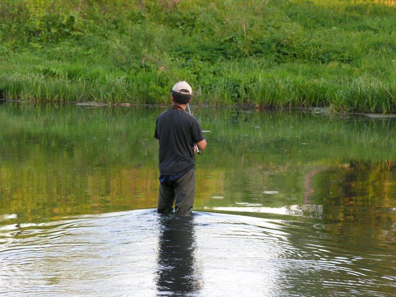 Рыба орловской области фото