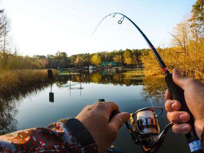Секреты рыбалки: Изменение атмосферного давления Столбик барометра падает прямо на